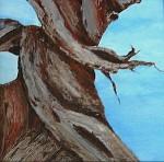 Pépin Original Painting, Bristlecone 9x12 MINI