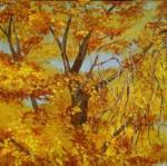 autumntreetop-228x227