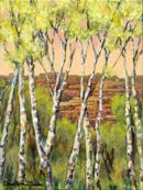 """""""Canyon Sentinals"""" by Christina Madden"""